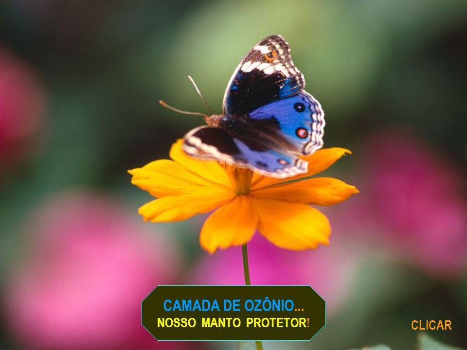 CAMADA DE OZÔNIO... NOSSO MANTO PROTETOR! CLICAR