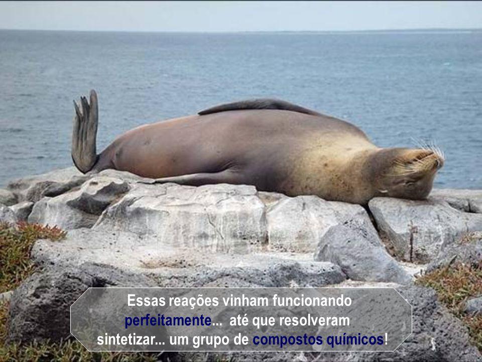 bem como... os seres vivos habitarem sobre a terra!