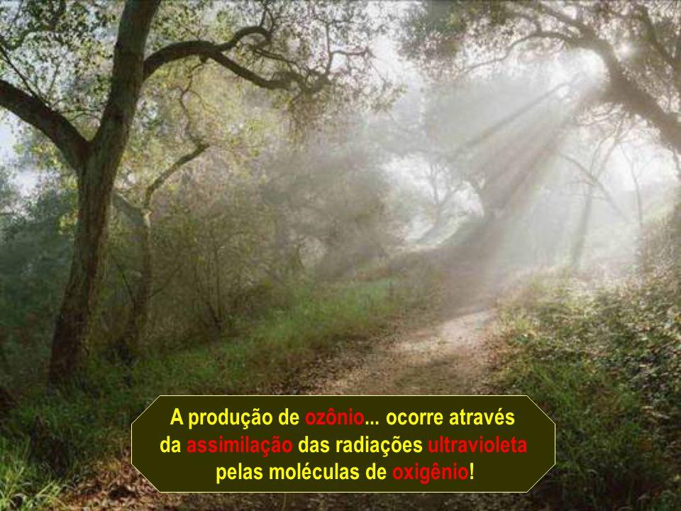 A produção de ozônio...