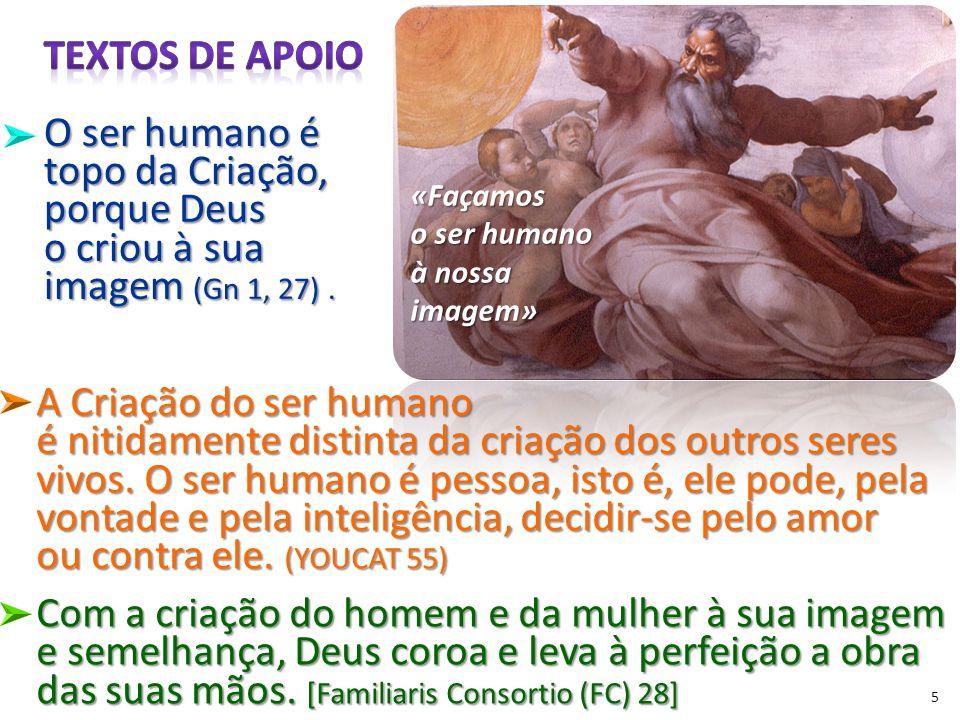 «Façamos o ser humano à nossa imagem» 5 A Criação do ser humano é nitidamente distinta da criação dos outros seres vivos.
