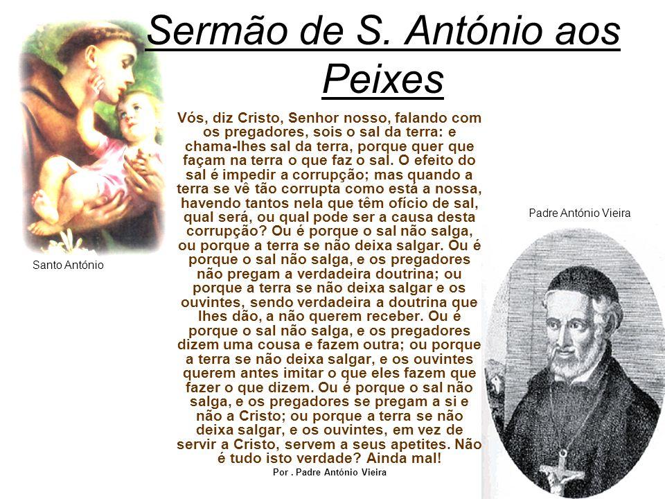 Por : Fernando Roda e Daniel Vieira 1ªMA