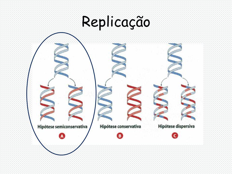 Replicação