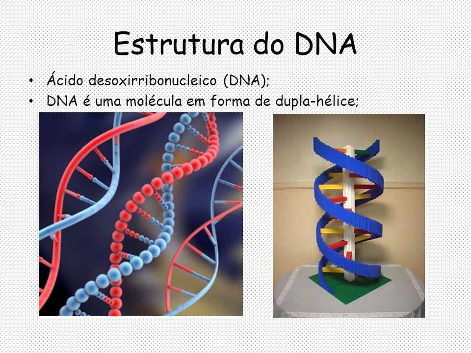 DNA = união de vários nucleotídeos; ESTRUTURA DO DNA Desoxirribose ADENINA (A) GUANINA (G) TIMINA (T) CITOSINA (C) PURINAS PIRIMIDINAS
