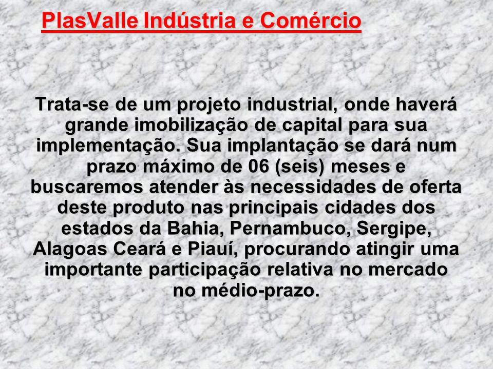 PlasValle Indústria e Comércio PlasValle Indústria e Comércio Trata-se de um projeto industrial, onde haverá grande imobilização de capital para sua i