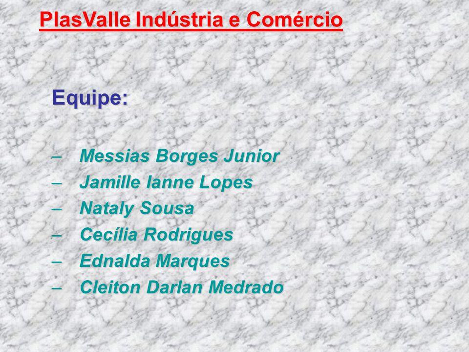 Equipe: –Messias Borges Junior –Jamille Ianne Lopes –Nataly Sousa –Cecília Rodrigues –Ednalda Marques –Cleiton Darlan Medrado PlasValle Indústria e Co