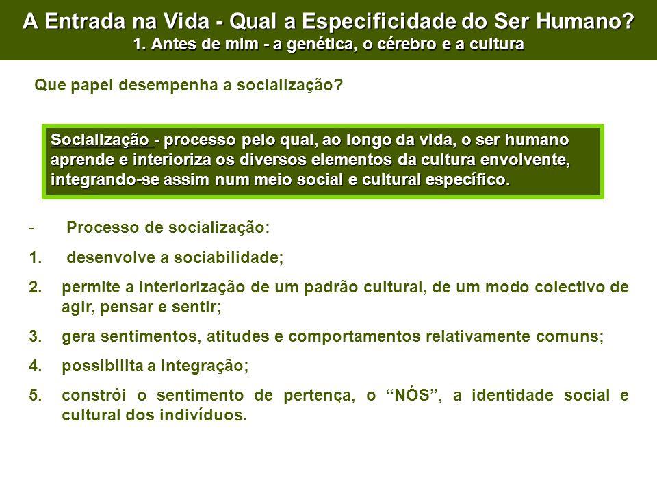 A Entrada na Vida - Qual a Especificidade do Ser Humano? 1. Antes de mim - a genética, o cérebro e a cultura Socialização - processo pelo qual, ao lon
