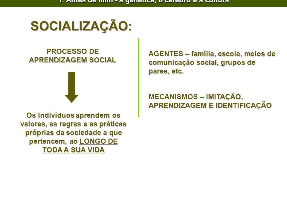 SOCIALIZAÇÃO: PROCESSO DE APRENDIZAGEM SOCIAL Os Indivíduos aprendem os valores, as regras e as práticas próprias da sociedade a que pertencem, ao LON