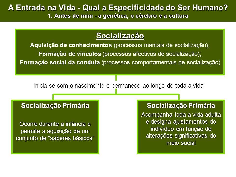Socialização Aquisição de conhecimentos (processos mentais de socialização); Formação de vínculos (processos afectivos de socialização); Formação soci