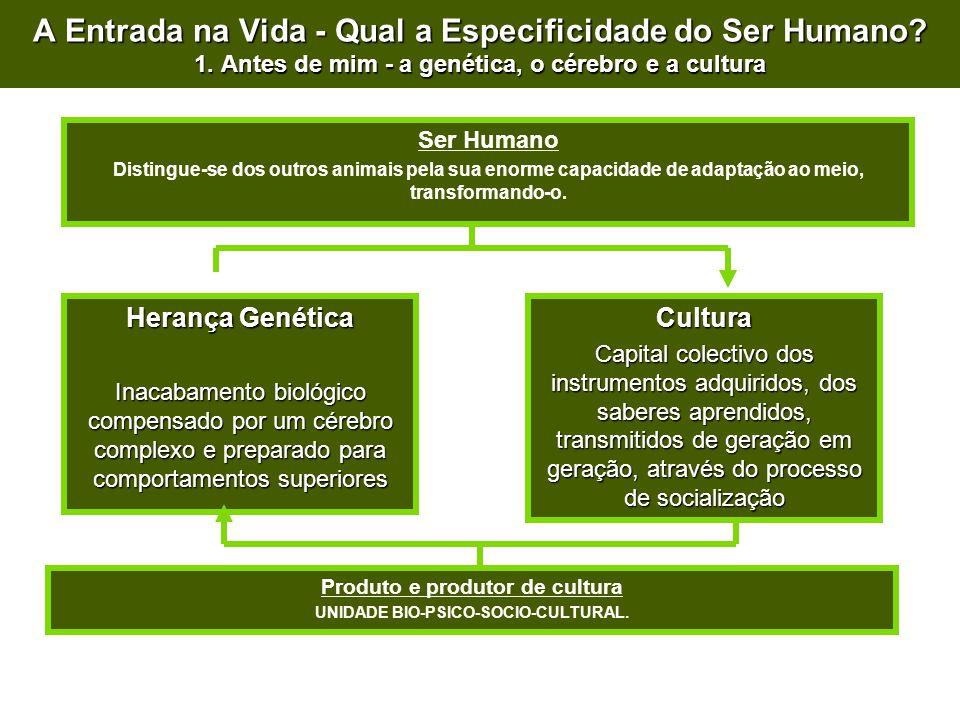 A Entrada na Vida - Qual a Especificidade do Ser Humano? 1. Antes de mim - a genética, o cérebro e a cultura Ser Humano Distingue-se dos outros animai