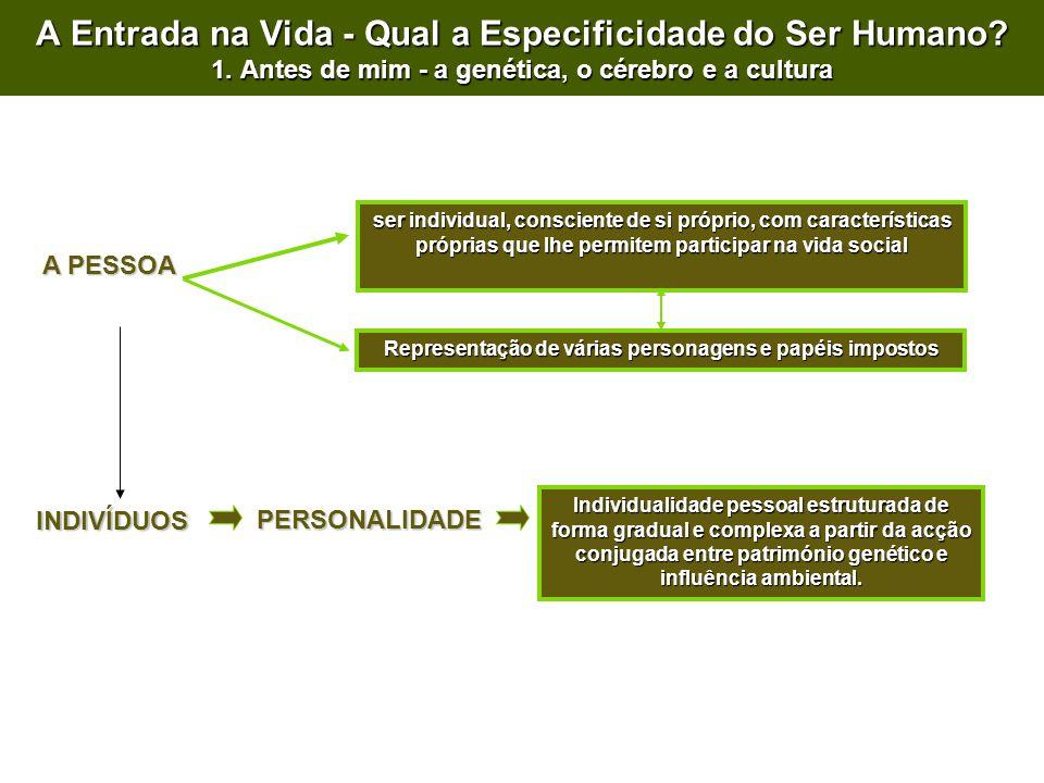 A PESSOA ser individual, consciente de si próprio, com características próprias que lhe permitem participar na vida social INDIVÍDUOS PERSONALIDADE A Entrada na Vida - Qual a Especificidade do Ser Humano.