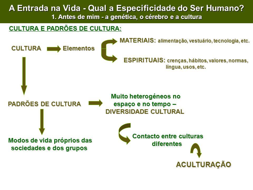 CULTURA CULTURA E PADRÕES DE CULTURA: Elementos MATERIAIS: alimentação, vestuário, tecnologia, etc.
