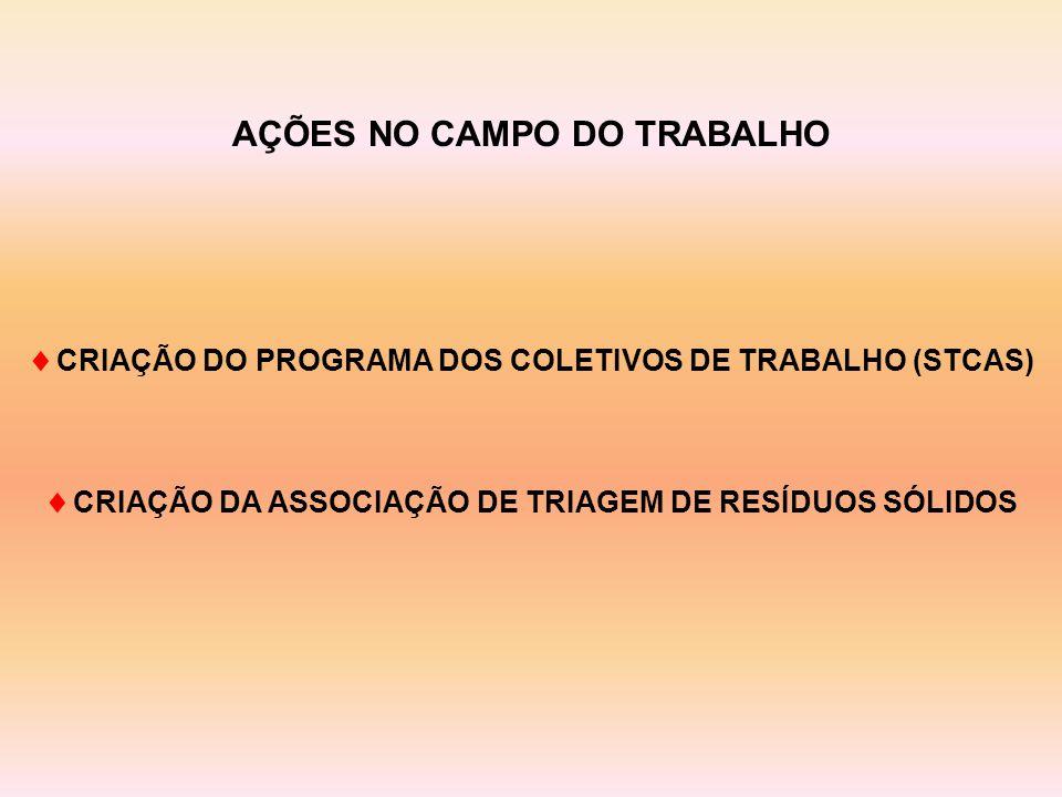  CRIAÇÃO DO PROGRAMA DOS COLETIVOS DE TRABALHO (STCAS)  CRIAÇÃO DA ASSOCIAÇÃO DE TRIAGEM DE RESÍDUOS SÓLIDOS AÇÕES NO CAMPO DO TRABALHO