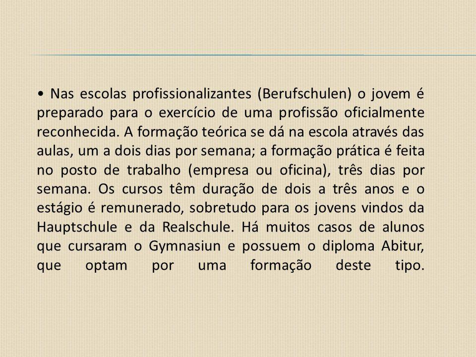 Nas escolas profissionalizantes (Berufschulen) o jovem é preparado para o exercício de uma profissão oficialmente reconhecida. A formação teórica se d