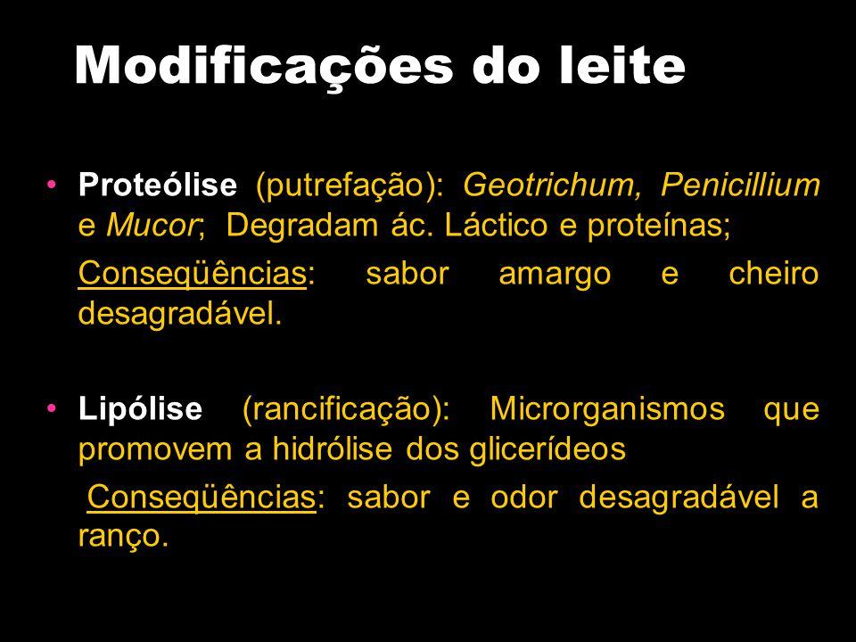 Modificações do leite Proteólise (putrefação): Geotrichum, Penicillium e Mucor; Degradam ác. Láctico e proteínas; Conseqüências: sabor amargo e cheiro