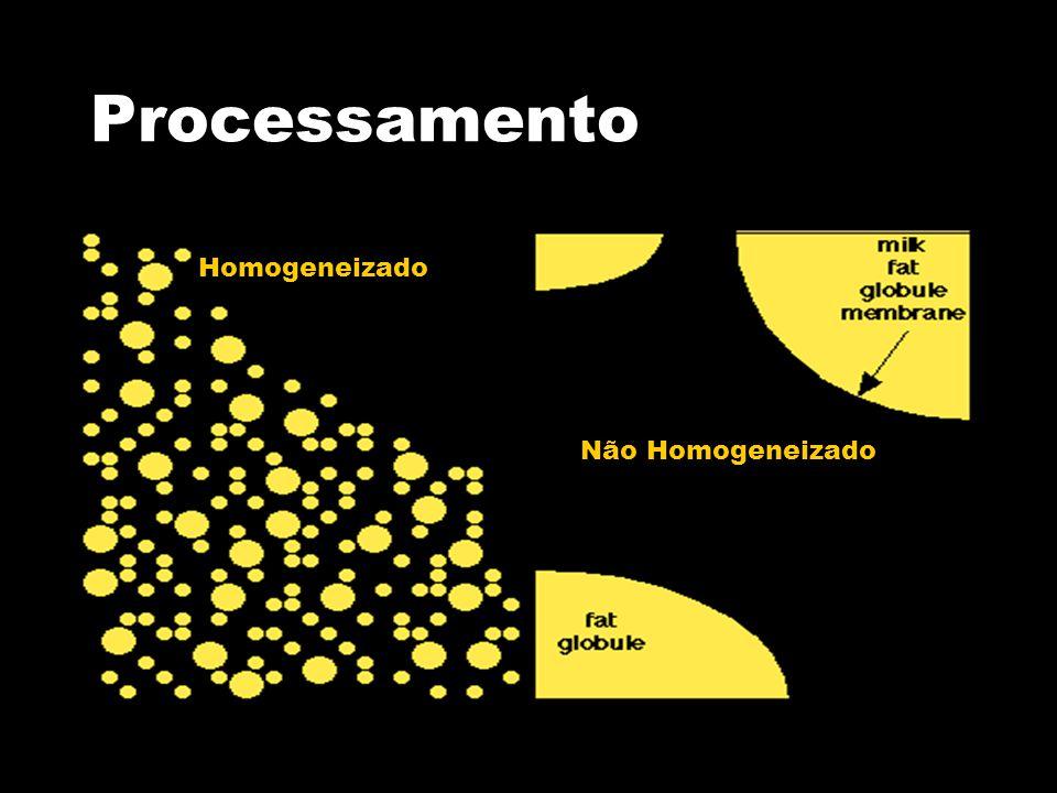 Processamento Homogeneizado Não Homogeneizado