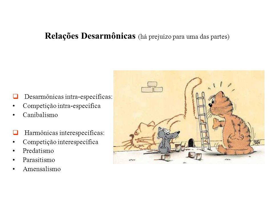 Relações Desarmônicas (há prejuízo para uma das partes)   Desarmônicas intra-específicas: Competição intra-específica Canibalismo   Harmônicas int