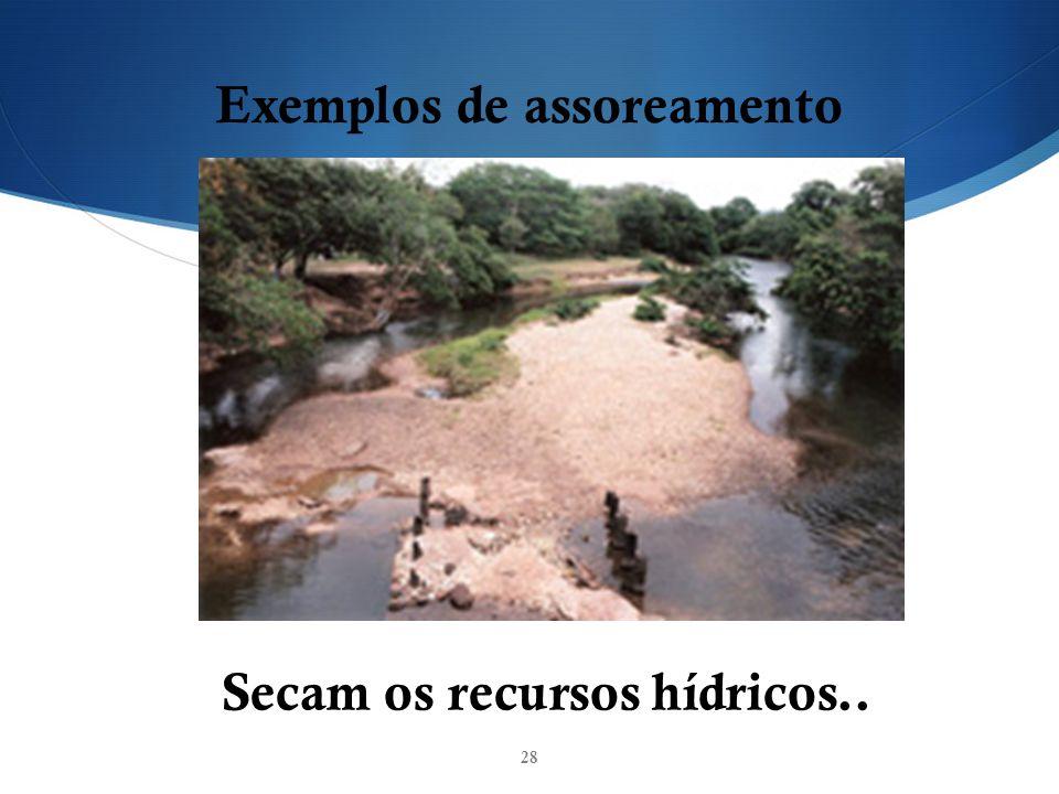 28 Exemplos de assoreamento Secam os recursos hídricos..