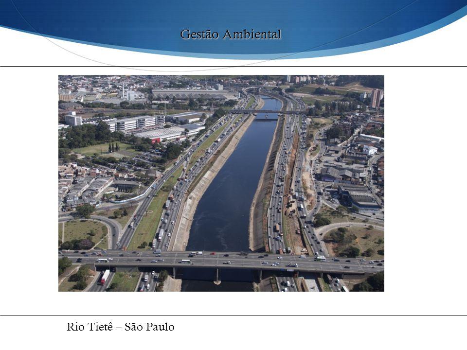 Gestão Ambiental Rio Tietê – São Paulo