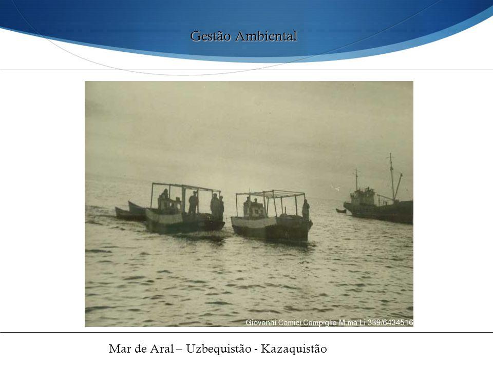 Gestão Ambiental Mar de Aral – Uzbequistão - Kazaquistão