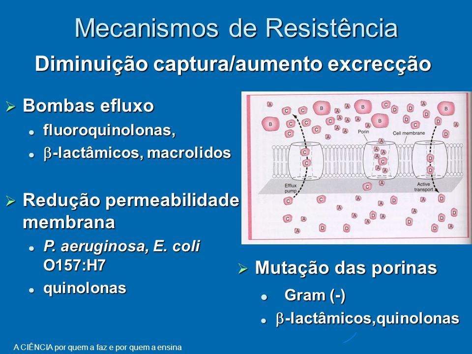 A CIÊNCIA por quem a faz e por quem a ensina Diminuição captura/aumento excrecção Mecanismos de Resistência  Bombas efluxo fluoroquinolonas, fluoroquinolonas,  -lactâmicos, macrolidos  -lactâmicos, macrolidos  Redução permeabilidade membrana P.
