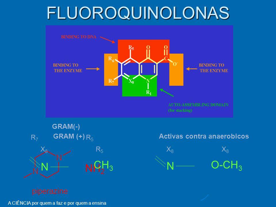 A CIÊNCIA por quem a faz e por quem a ensina FLUOROQUINOLONAS NH 2 R7R5R7R5 GRAM(-) CH 3 GRAM (+) X8R5X8R5 N O-CH 3 Activas contra anaerobicos X8X8X8X8 N
