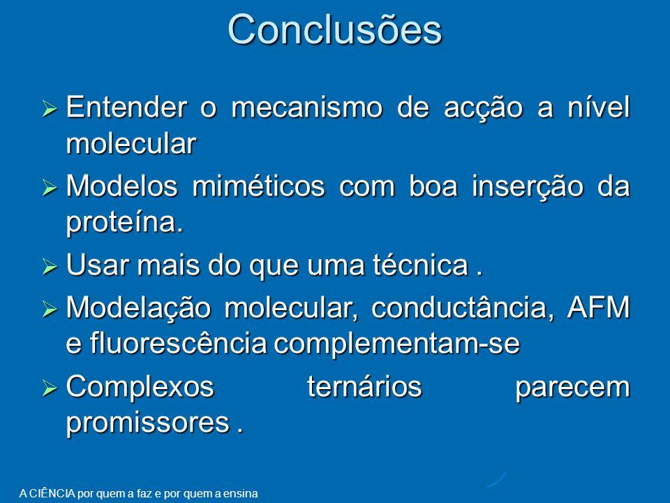 A CIÊNCIA por quem a faz e por quem a ensinaConclusões  Entender o mecanismo de acção a nível molecular  Modelos miméticos com boa inserção da proteína.