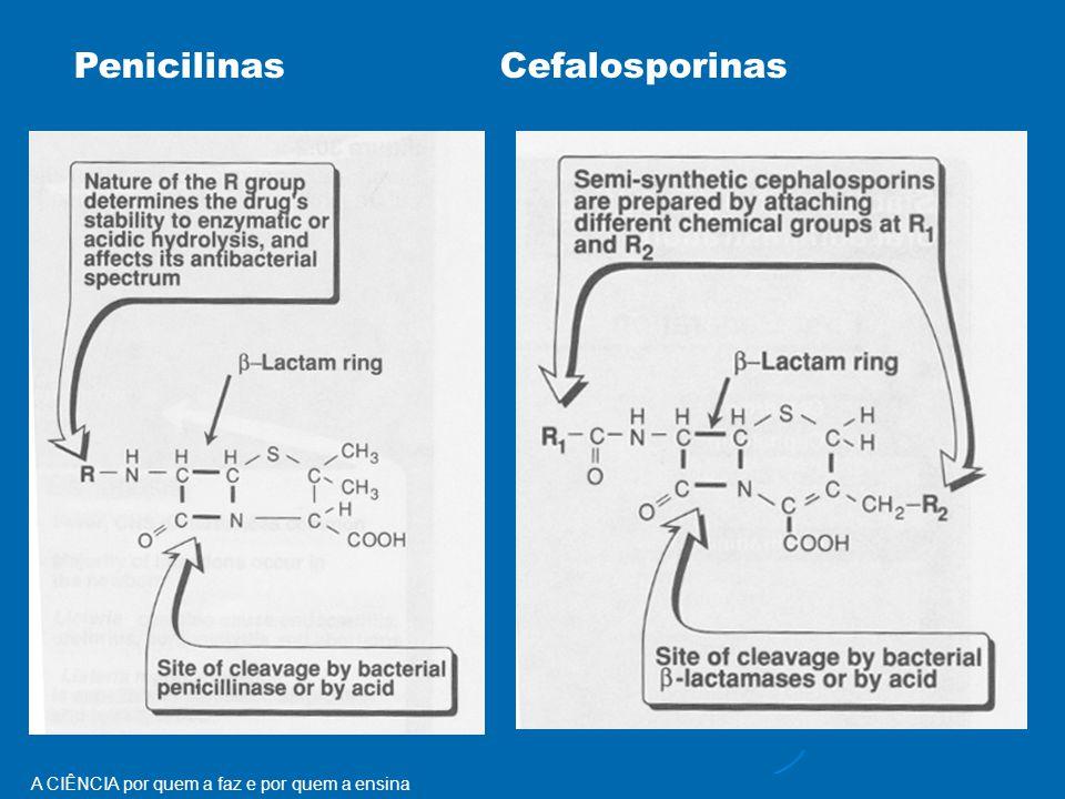 A CIÊNCIA por quem a faz e por quem a ensina PenicilinasCefalosporinas