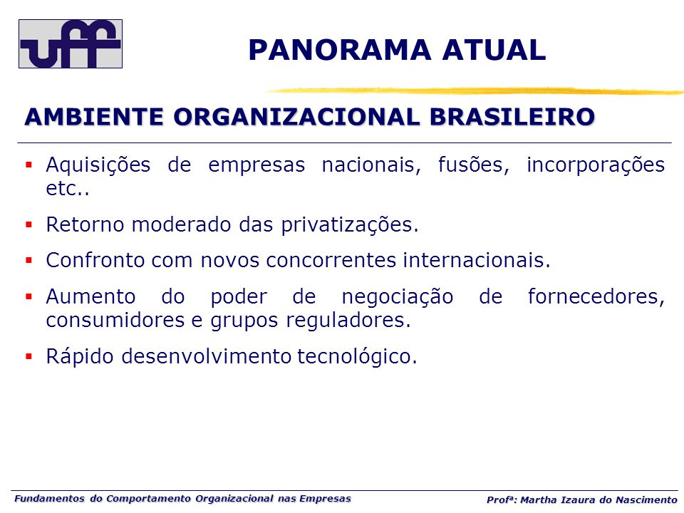 Fundamentos do Comportamento Organizacional nas Empresas Prof a : Martha Izaura do Nascimento  Aquisições de empresas nacionais, fusões, incorporações etc..