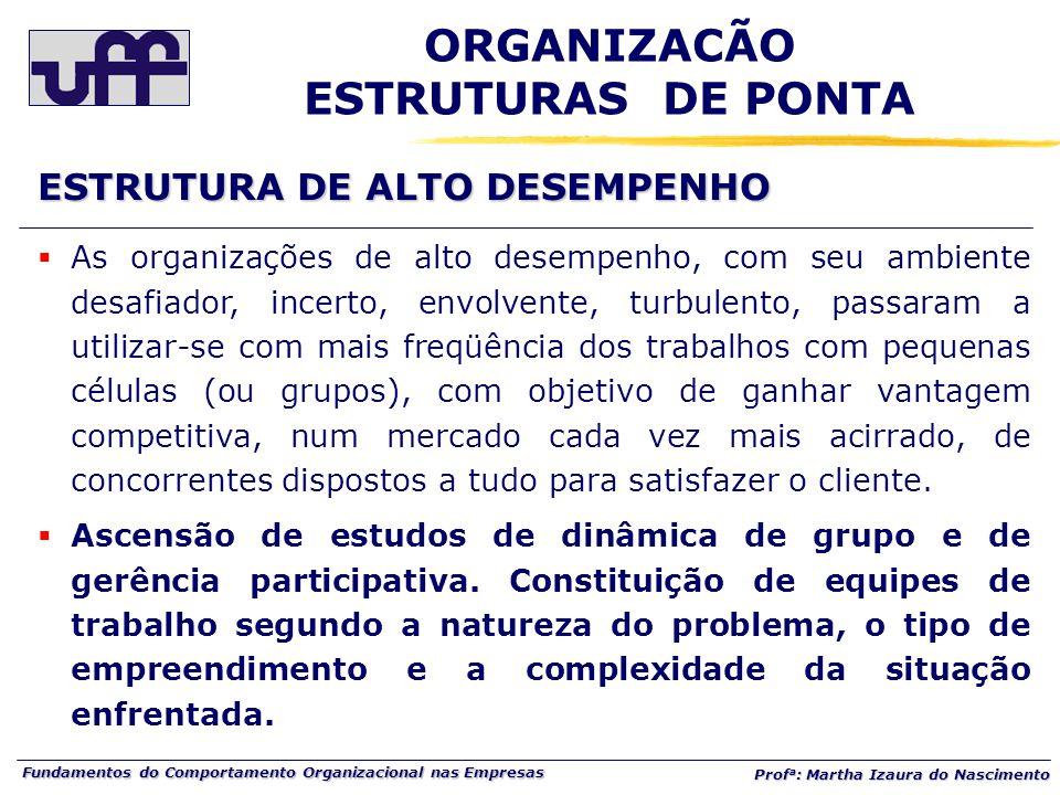 Fundamentos do Comportamento Organizacional nas Empresas Prof a : Martha Izaura do Nascimento  As organizações de alto desempenho, com seu ambiente d
