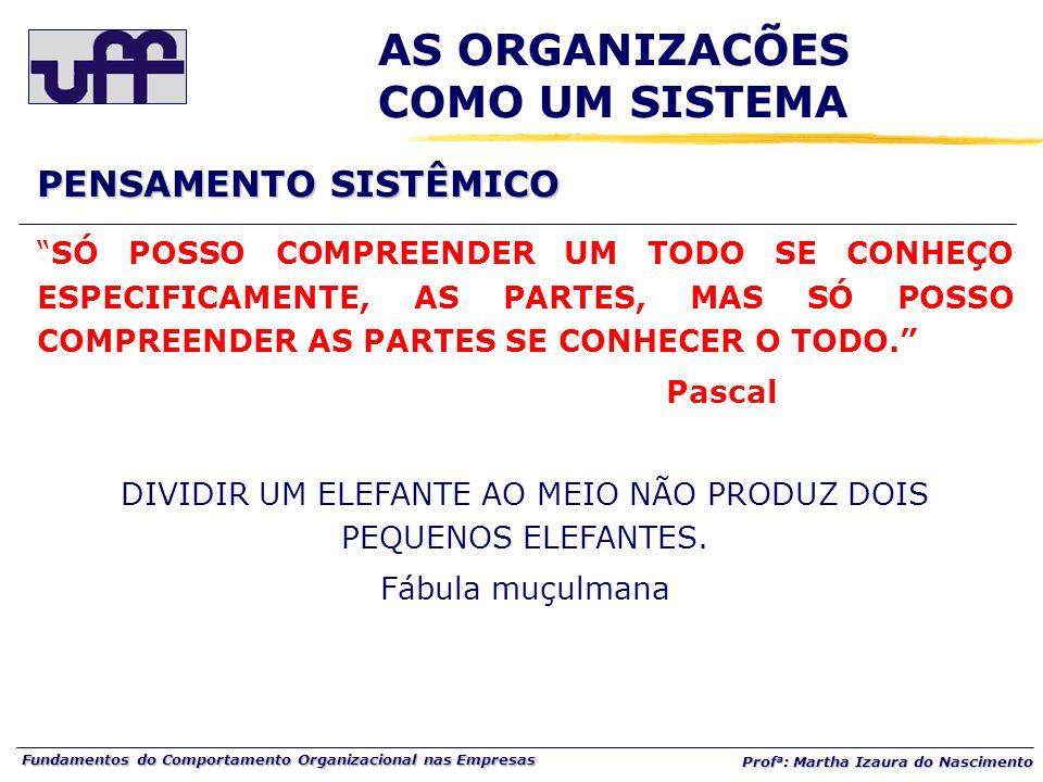 Fundamentos do Comportamento Organizacional nas Empresas Prof a : Martha Izaura do Nascimento SÓ POSSO COMPREENDER UM TODO SE CONHEÇO ESPECIFICAMENTE, AS PARTES, MAS SÓ POSSO COMPREENDER AS PARTES SE CONHECER O TODO. Pascal DIVIDIR UM ELEFANTE AO MEIO NÃO PRODUZ DOIS PEQUENOS ELEFANTES.