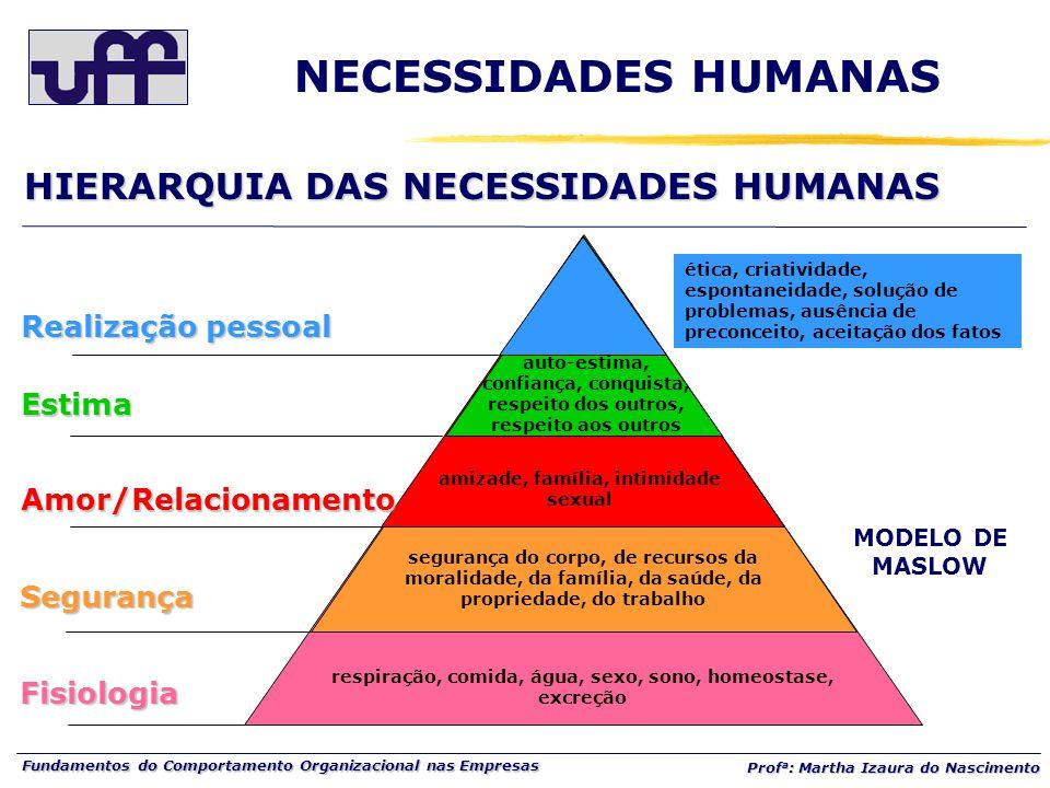 Fundamentos do Comportamento Organizacional nas Empresas Prof a : Martha Izaura do Nascimento HIERARQUIA DAS NECESSIDADES HUMANAS NECESSIDADES HUMANAS
