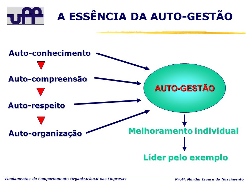Fundamentos do Comportamento Organizacional nas Empresas Prof a : Martha Izaura do Nascimento Auto-conhecimento Auto-compreensão Auto-respeito Auto-or