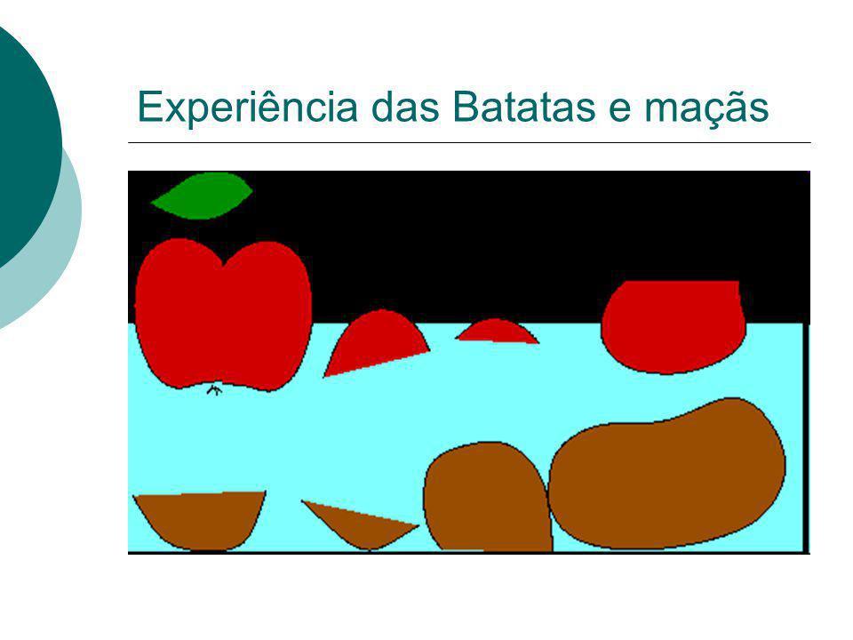 Experiência das Batatas e maçãs