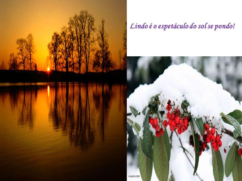 Lindo é enxergar Deus em cada demonstração de amor, de alegria, de felicidade.