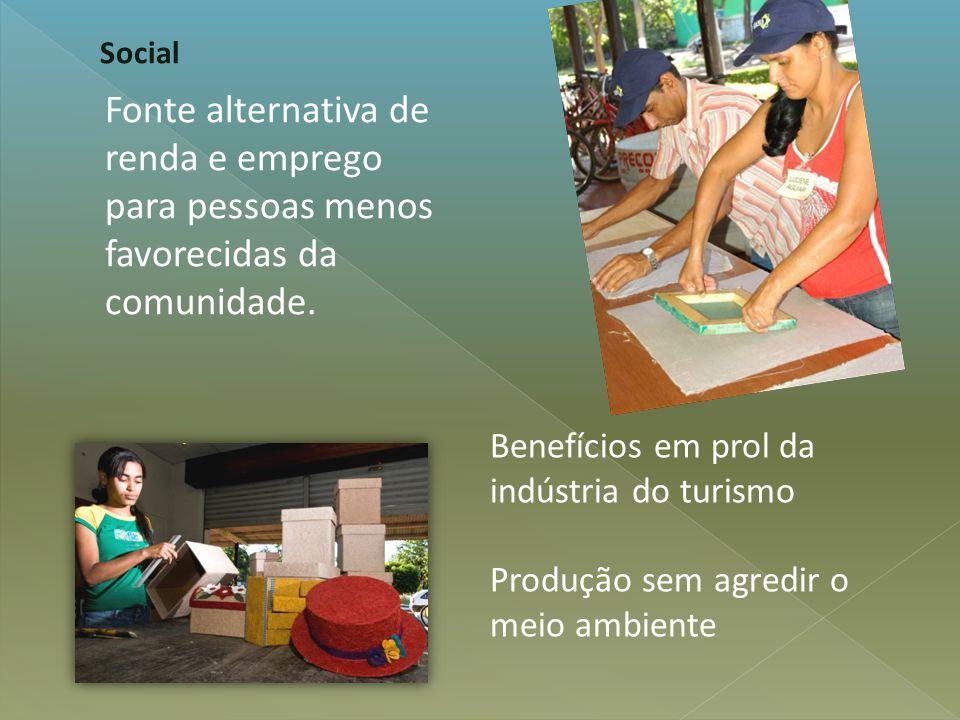 Fonte alternativa de renda e emprego para pessoas menos favorecidas da comunidade. Social Benefícios em prol da indústria do turismo Produção sem agre