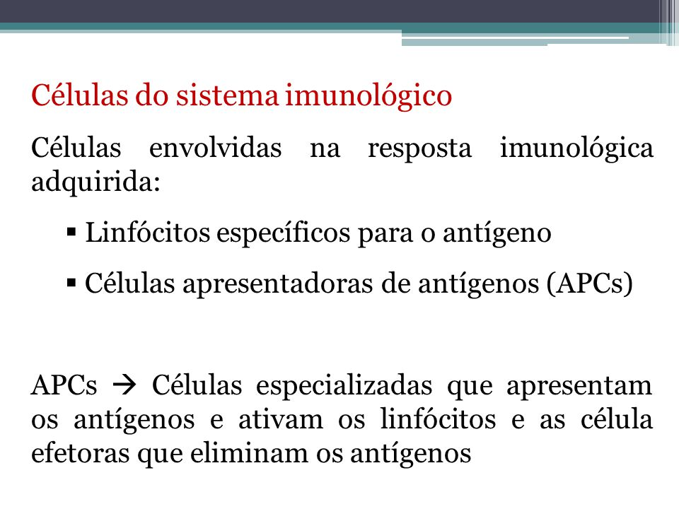 Células do sistema imunológico  Linfócitos  São as únicas células do corpo capazes de reconhecer e distinguir de modo específico diversos determinantes antigênicos.
