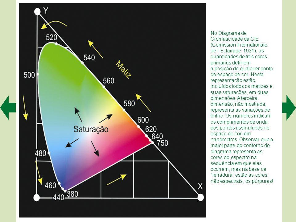 A. Os bastonetes são de um único tipo: absorvem preferencialmente luz em torno de 496 nm. Mas os cones apresentam três tipos, cada um com um pigmento