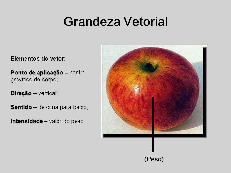 Grandeza Vetorial (Peso) Elementos do vetor: Ponto de aplicação – Ponto de aplicação – centro gravítico do corpo; Direção – Direção – vertical; Sentid