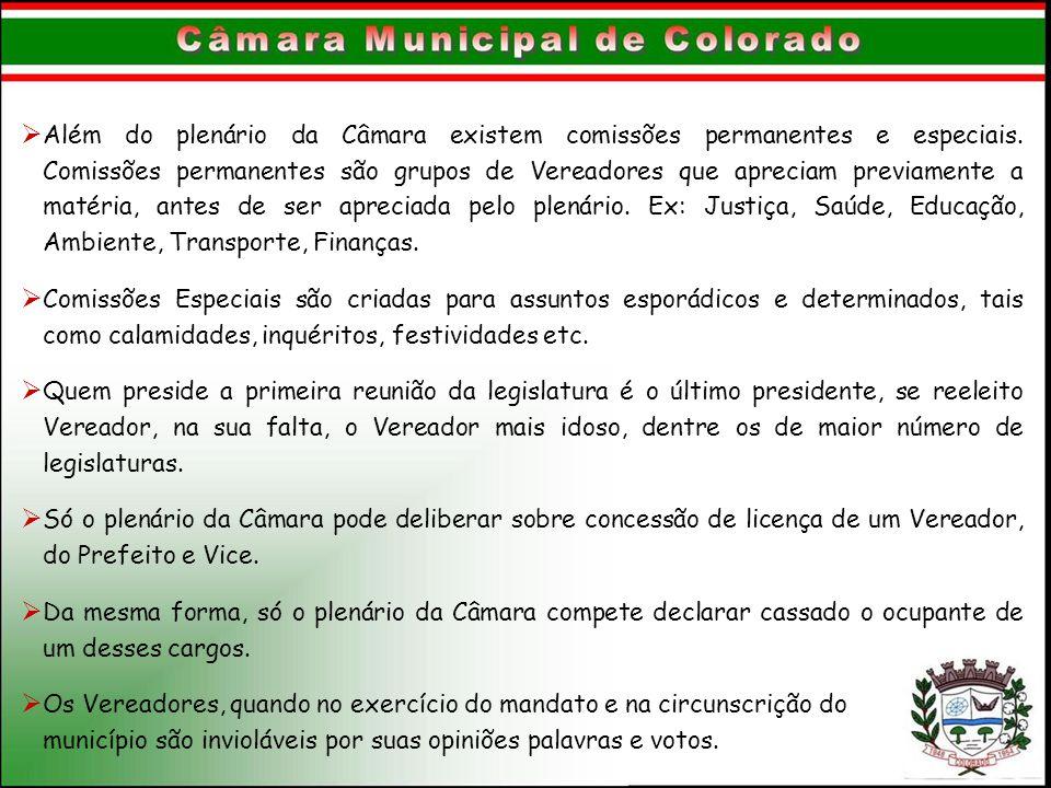  Além do plenário da Câmara existem comissões permanentes e especiais. Comissões permanentes são grupos de Vereadores que apreciam previamente a maté