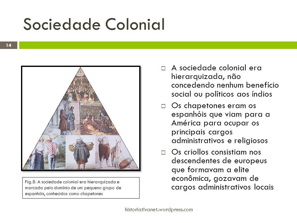 Sociedade Colonial  A sociedade colonial era hierarquizada, não concedendo nenhum benefício social ou políticos aos índios  Os chapetones eram os es