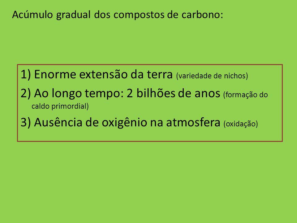 Acúmulo gradual dos compostos de carbono: 1) Enorme extensão da terra (variedade de nichos) 2) Ao longo tempo: 2 bilhões de anos (formação do caldo pr