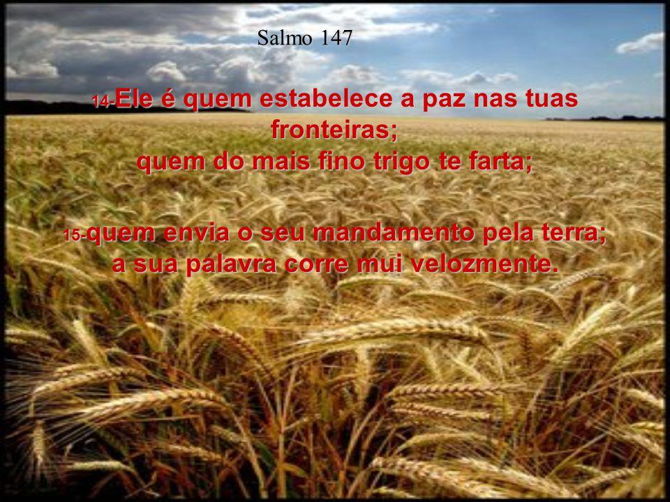 11- O Senhor se compraz nos que o temem, nos que esperam na sua benignidade. Salmo 147 12- Louva, ó Jerusalém, ao Senhor; louva, ó Sião, ao teu Deus.