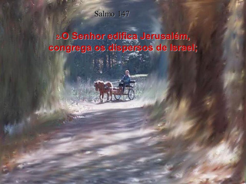 1- Louvai ao Senhor; porque é bom cantar louvores ao nosso Deus; pois isso é agradável, e decoroso é o louvor. Salmo 147