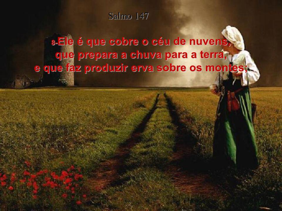 7- Cantai ao Senhor em ação de graças; com a harpa cantai louvores ao nosso Deus. Salmo 147