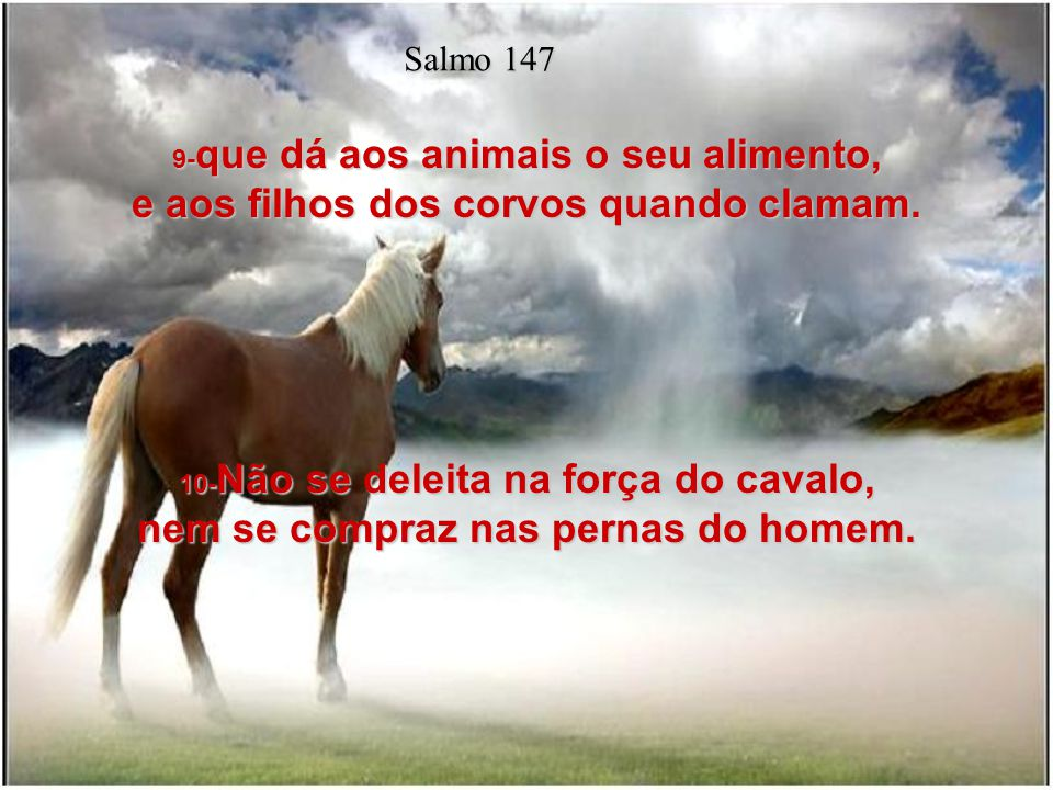8- Ele é que cobre o céu de nuvens, que prepara a chuva para a terra, e que faz produzir erva sobre os montes; Salmo 147