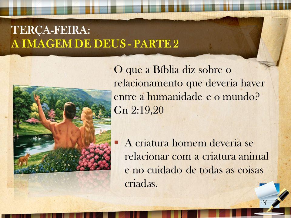 TERÇA-FEIRA: A IMAGEM DE DEUS - PARTE 2 O que a Bíblia diz sobre o relacionamento que deveria haver entre a humanidade e o mundo? Gn 2:19,20  A criat