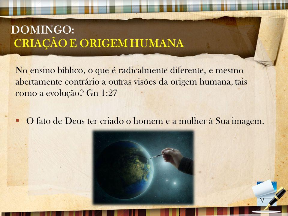 DOMINGO: CRIAÇÃO E ORIGEM HUMANA As origens lidam com a história.