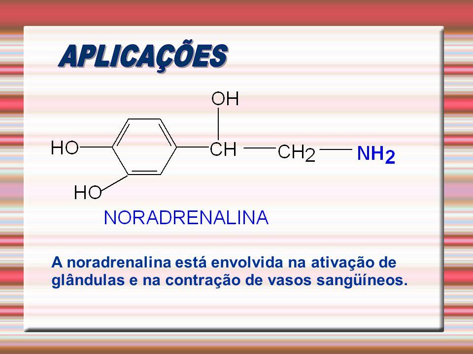 A noradrenalina está envolvida na ativação de glândulas e na contração de vasos sangüíneos.
