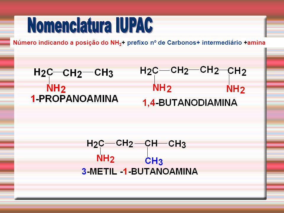 Número indicando a posição do NH 2 + prefixo nº de Carbonos+ intermediário +amina