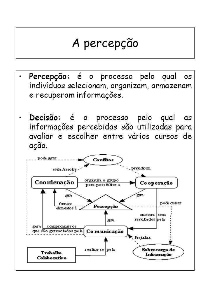 A percepção Percepção: é o processo pelo qual os indivíduos selecionam, organizam, armazenam e recuperam informações. Decisão: é o processo pelo qual